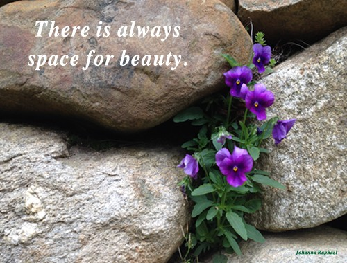 There is always space for beauty - Johanna Raphael.jpg